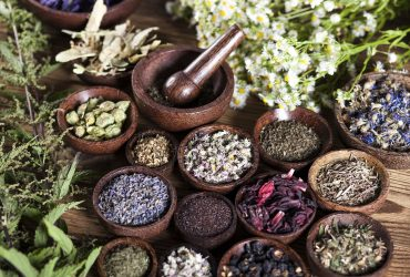 médecine chinoise plantes fraiches